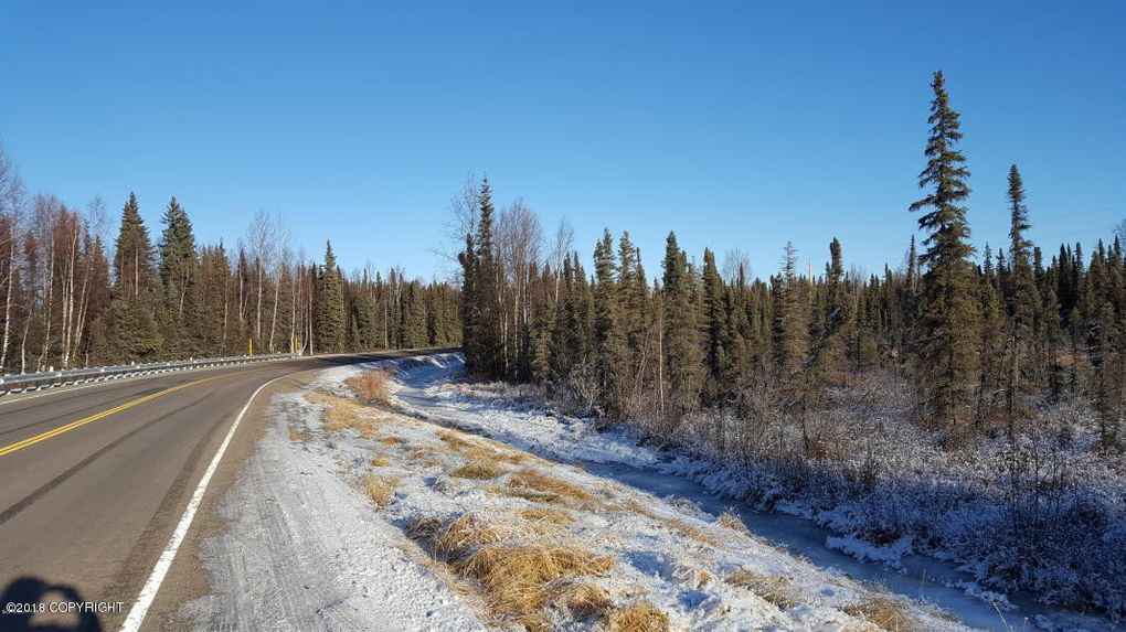 19566 Willow Fishhook Rd, Willow, AK 99688