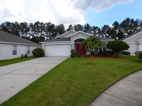 26618 Sea Hero Cir, Wesley Chapel, FL 33544