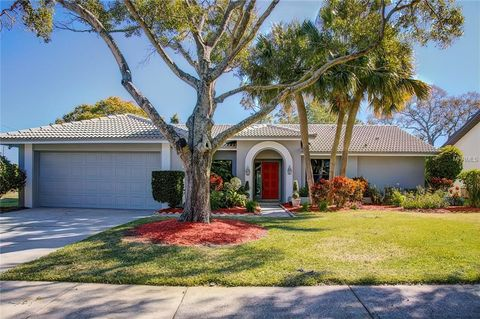 Countryside Northridge Clearwater Fl Real Estate Homes For Sale