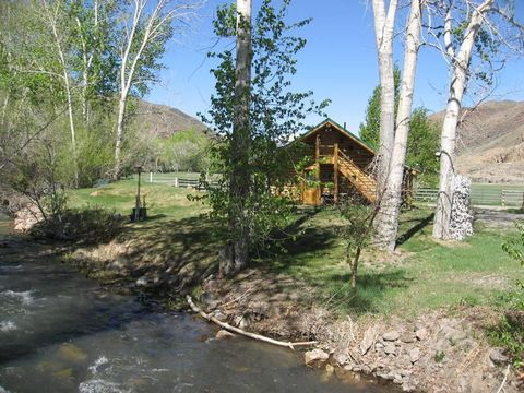 5479 Challis Creek Road Rd, Challis, ID 83226