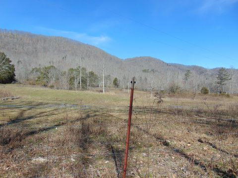 Photo of 168 Combs Ln, Speedwell, TN 37870