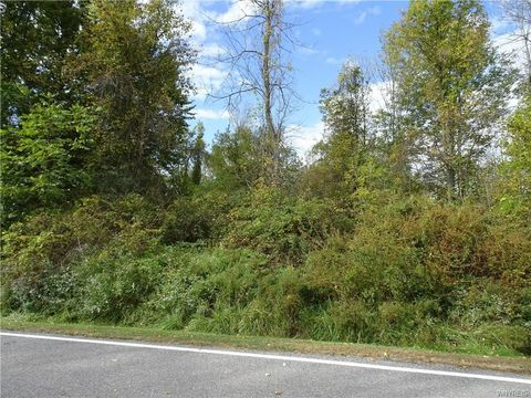 Photo of 10650 Rapids Rd, Akron, NY 14032