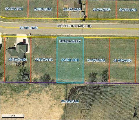 1313 Mulberry Ave Ne, Montgomery, MN 56069