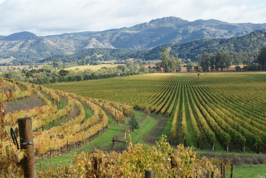 10 Vineyard View Dr, Napa, CA 94558