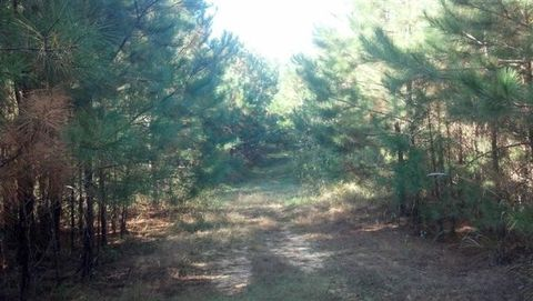 Bud Thompson Rd, West Point, MS 39773