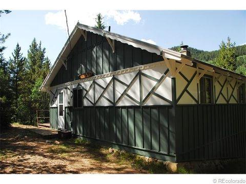 3321 Beaver Ln, Grant, CO 80448