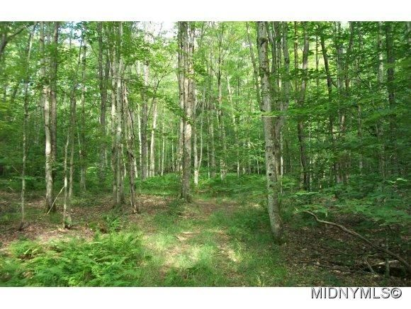 Briggs Rd, Remsen, NY 13438 - Land For Sale and Real ...