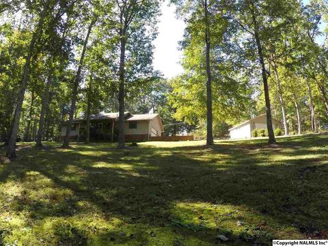 707 County Road 224, Dutton, AL 35744