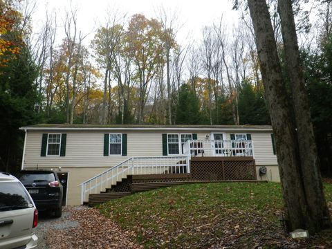 219 E Forest Brook Dr, Flinton, PA 16640