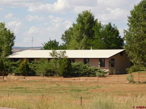Photo of 50206 Highway 491, Cahone, CO 81320