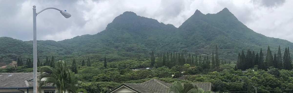 CORINDA WONG Honolulu HI Real Estate Agent realtor