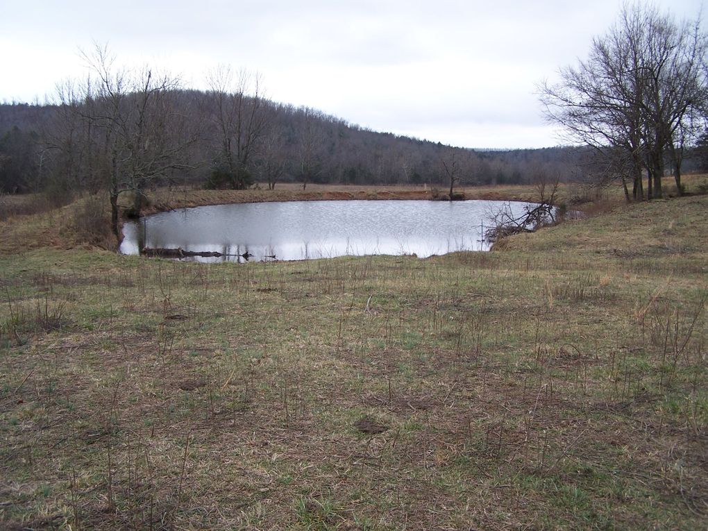 991 ring rd hardy ar 72542 land for sale and real estate listing