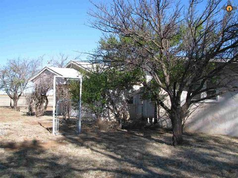 409 W Main St, House, NM 88121