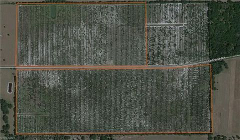 Photo of Goose Pond Rd, Ona, FL 33865
