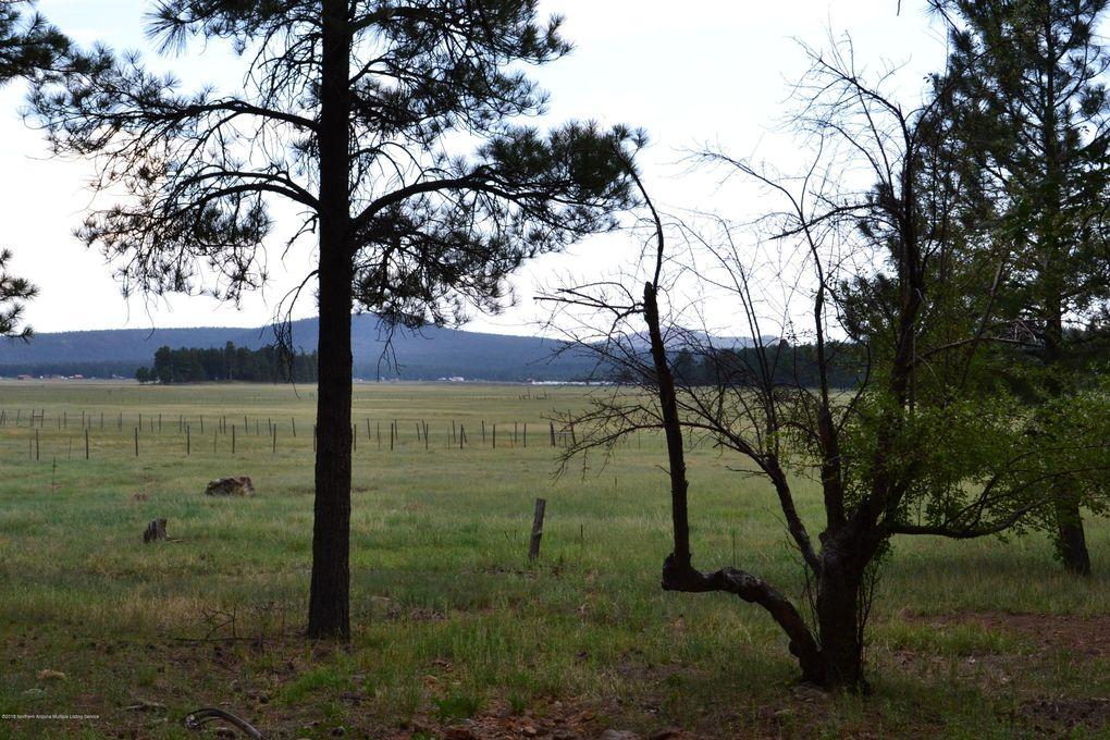 Mormon Lake Az >> 651 655 Lakeview Mormon Lake Az 86038 Land For Sale And Real