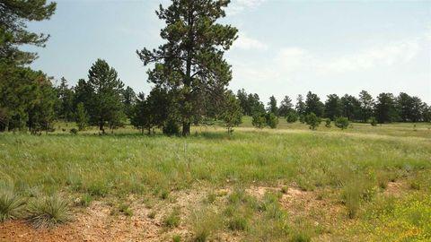 20 Mile Rd, Custer, SD 57730