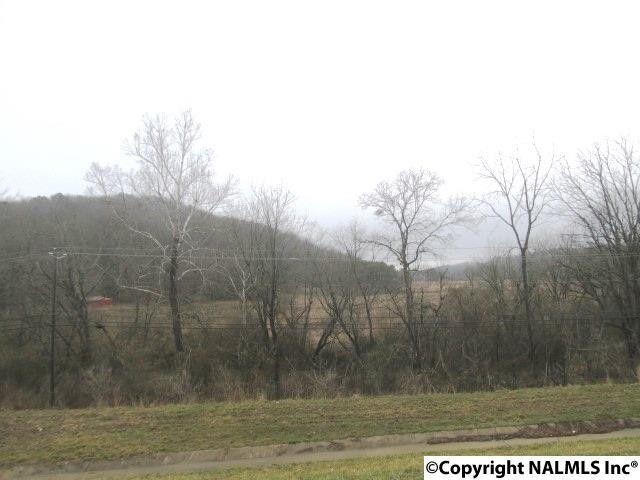 Spunky Hollow Rd, Remlap, AL 35133