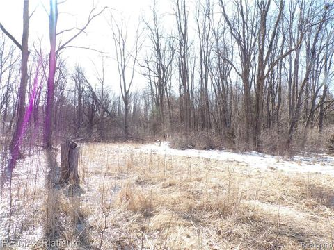 Photo of Vacant Hidden Valley Dr, Marion Township, MI 48843