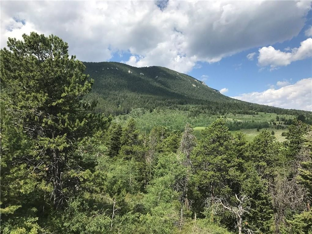 Souders Ln Lot 4A Red Lodge, MT 59068