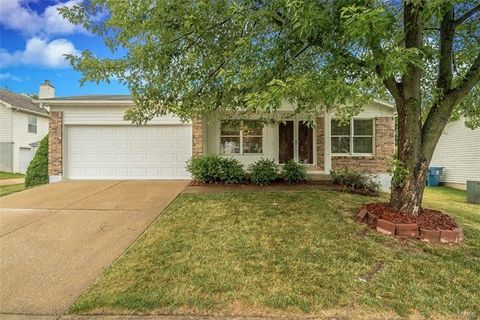 12145 Glenpark Dr, Maryland Heights, MO 63043