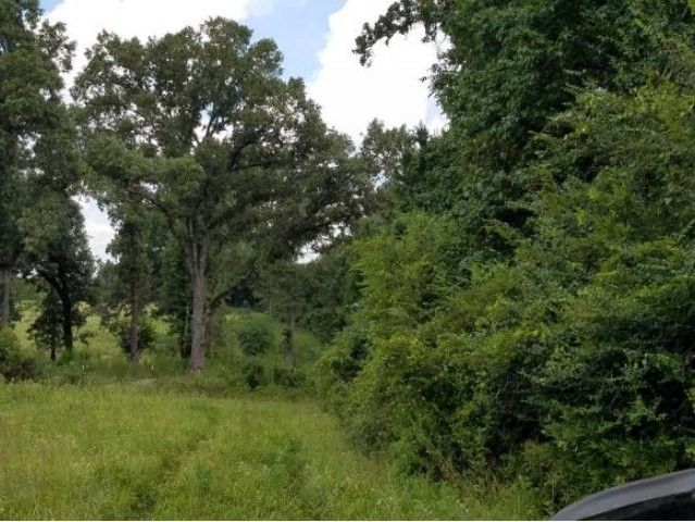 45 14 Ac Old Tyler Rd, Nacogdoches, TX 75961