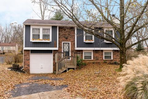 Sunbury Woods Westerville Oh Real Estate Homes For Sale