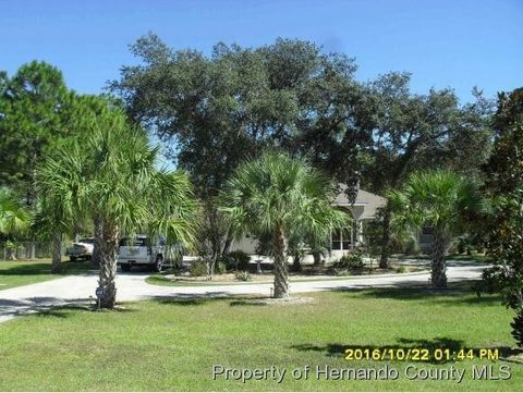 13132 Mottled Duck Rd, Weeki Wachee, FL 34614