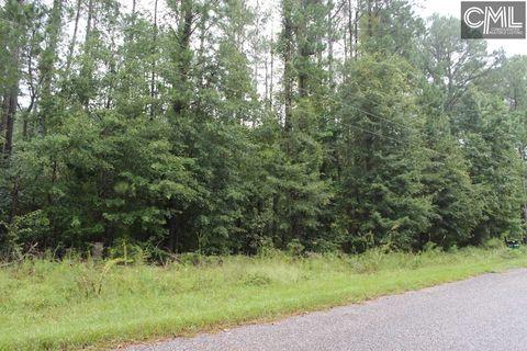 Pine Needle Cir, Gaston, SC 29053