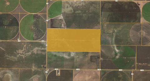 Photo of Farm Rd # 77, Morton, TX 79346