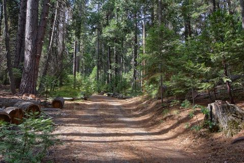 7607 Forest Dr, Fish Camp, CA 93623