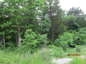 397 Shore Acres Dr, Powersite, MO 65731