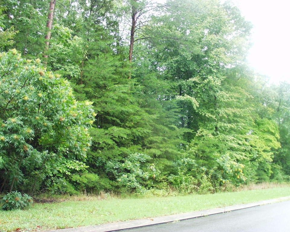 Land And Home For Sale In Dunlap Tn