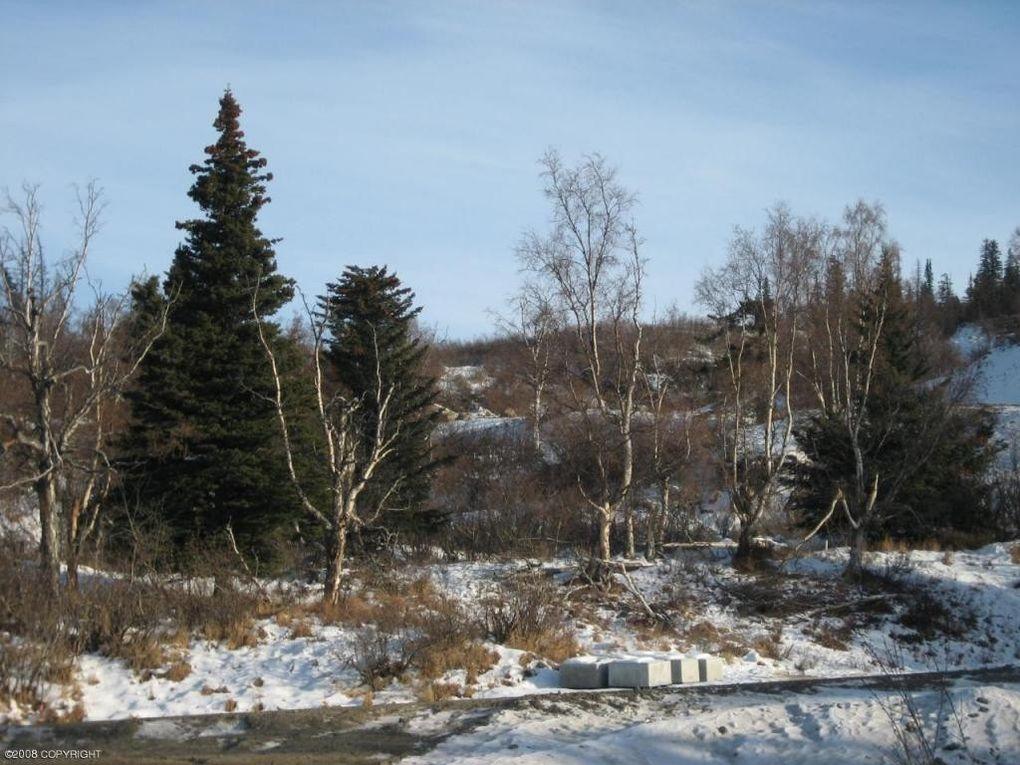L6 B2 Southpointe Ridge Dr, Anchorage, AK 99516