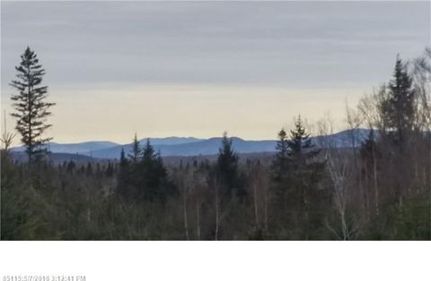 53 Gales Rd, Abbot, ME 04406