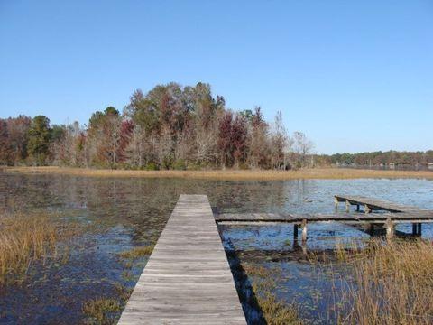 8049 Lake Eloise Dr, Donalsonville, GA 39845