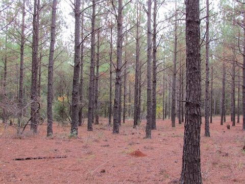 Photo of Smallpiece Rd, Plains, GA 31780