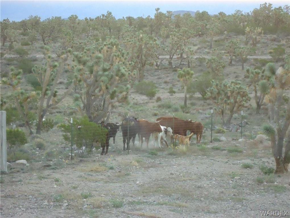 3 Acre Dr Lot Kimberly, Dolan Springs, AZ 86441