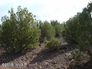 Of Sec 25 Lot 5, White Mountain Lake, AZ 85912