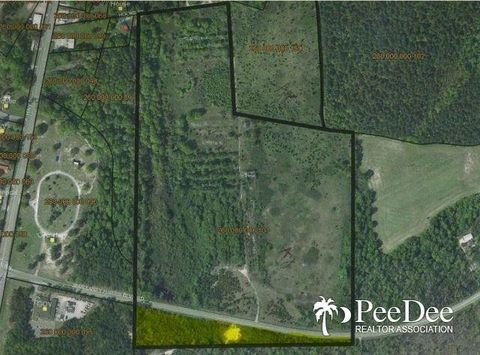 4 64 Acre Tract On N86 34 W Cash Rd, Cheraw, SC 29520