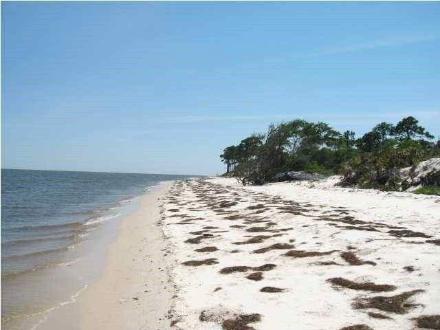 410 Bald Point Rd Panacea Fl 32346