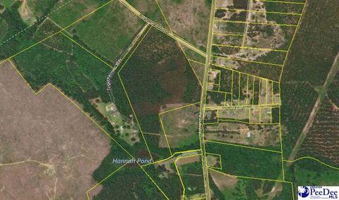 31 5 Acres Ashland Rd, McBee, SC 29101