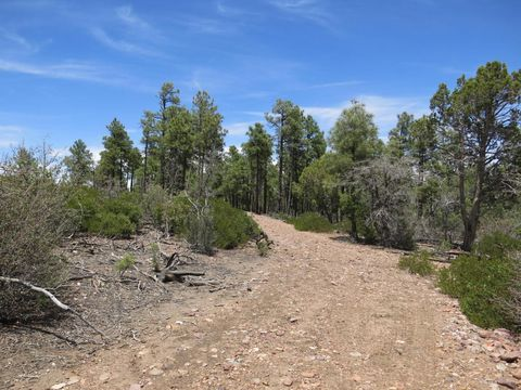 Photo of 4305 Fs 139 A Forest Servi Rd, Clay Springs, AZ 85923