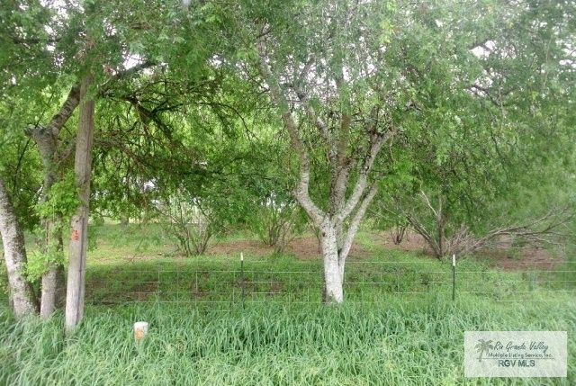 10820 fm 1421 olmito tx 78575 land for sale and real