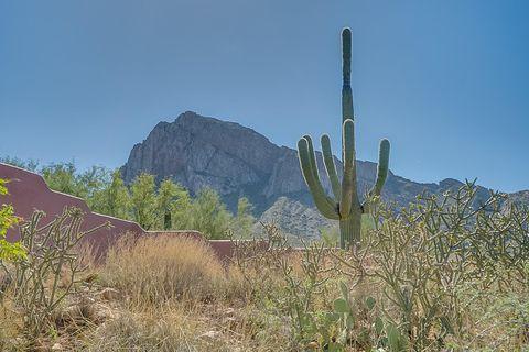Photo of Tucson, AZ 85737