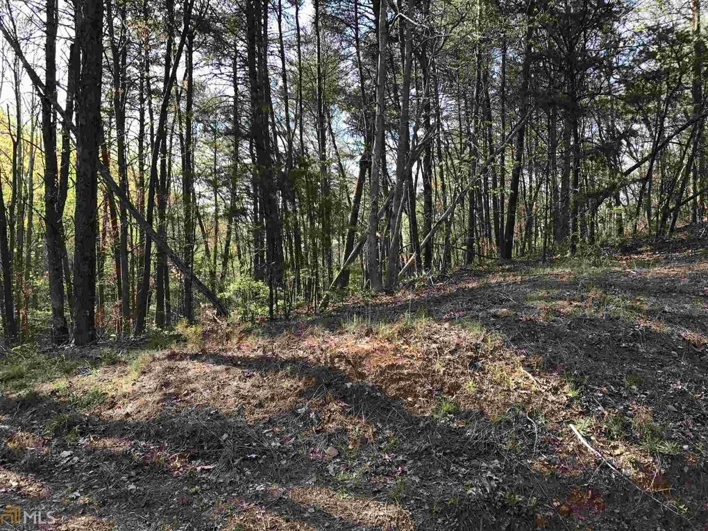 fouche gap rd rome ga 30165 land for sale and real estate