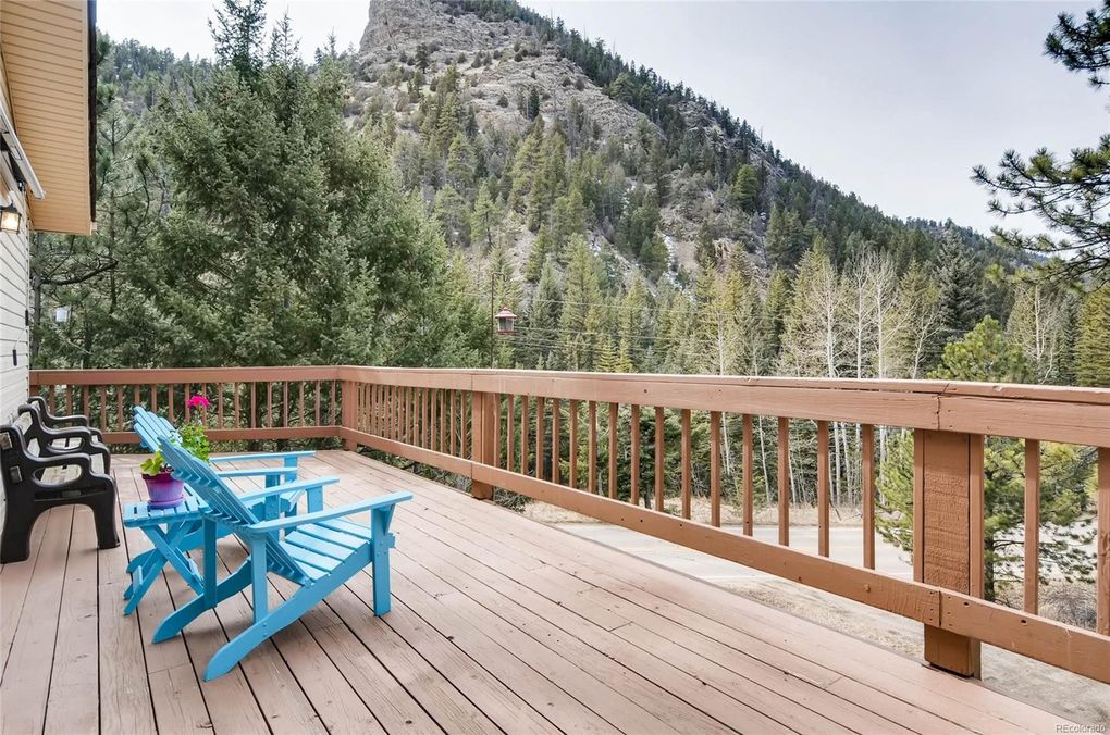 24 York Gulch Rd, Idaho Springs, CO 80452