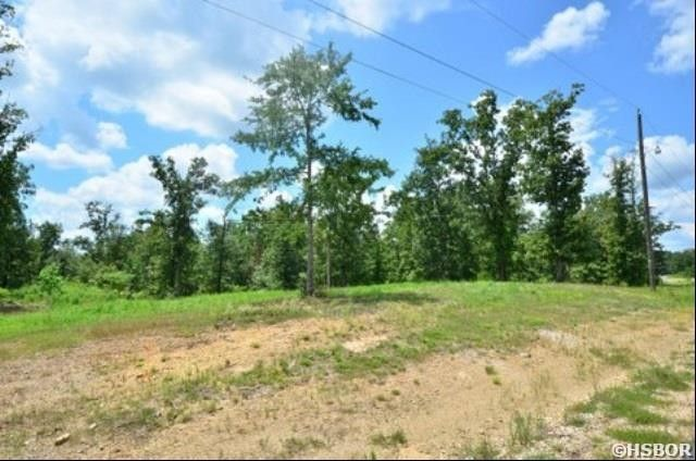 Lot 4 Morland 74 Acresmol Ct Unit 5, Hot Springs, AR 71913