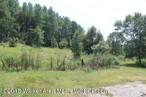 4084 Yellow Jacket Rd, Townley, AL 35587