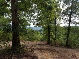 1335 River Dr, Celina, TN 38551