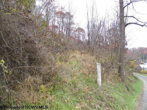 8 66 Ac Glovers Gap Rd, Metz, WV 26582